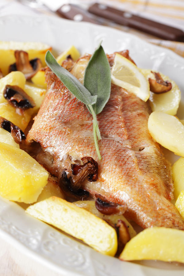 ψημένα grouper κόκκινα λαχανικά στοκ φωτογραφία με δικαίωμα ελεύθερης χρήσης