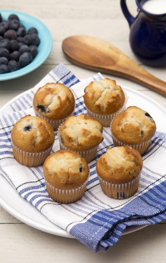 Ψημένα muffins βακκινίων στοκ φωτογραφία με δικαίωμα ελεύθερης χρήσης