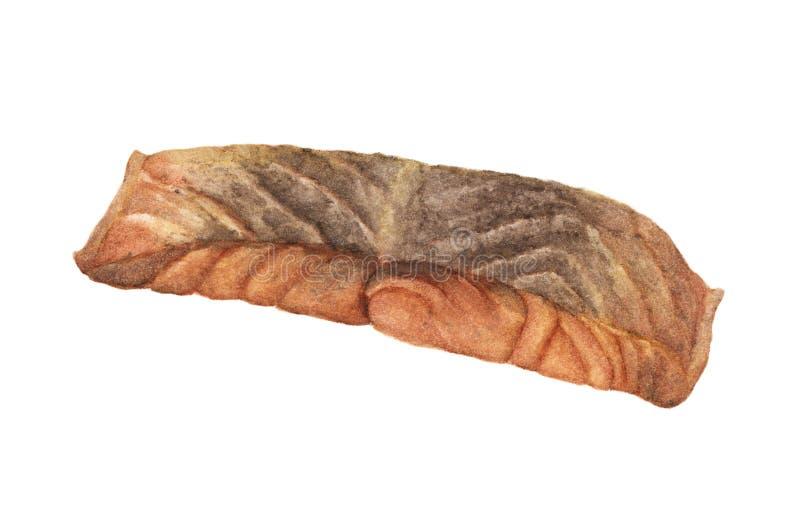 Ψημένος στη σχάρα σολομός που απομονώνεται στο άσπρο υπόβαθρο Απεικόνιση Watercolor των τροφίμων απεικόνιση αποθεμάτων