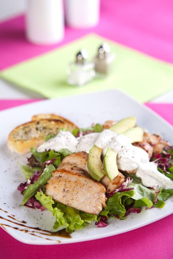 Download Ψημένο κρέας χοιρινού κρέατος με τη φρέσκια πράσινη σαλάτα Στοκ Εικόνες - εικόνα από γαστρονομικός, σαλάτα: 17055330