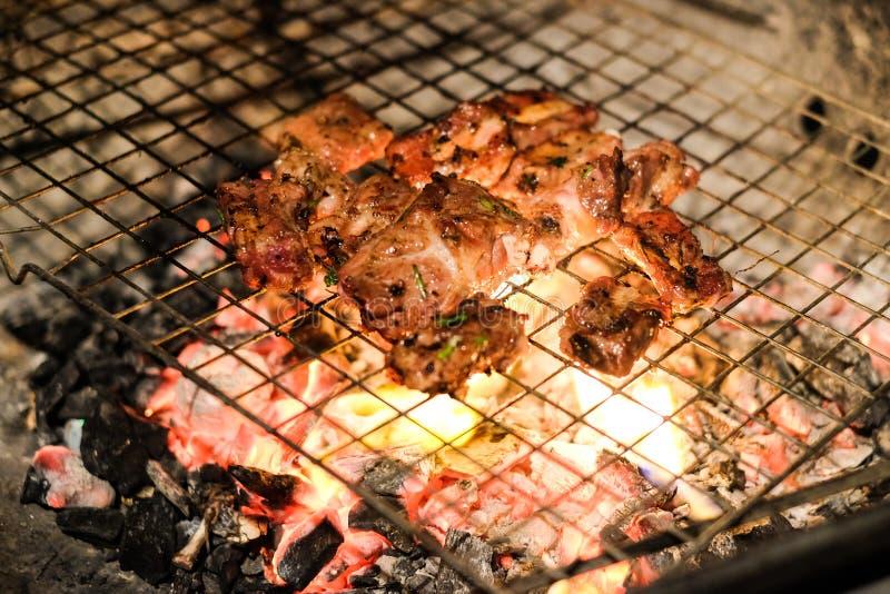 Ψημένο στη σχάρα ένζυμο βόειου κρέατος χοιρινού κρέατος και κρέατος με τη σάλτσα πιπεριών και στρειδιών στοκ εικόνες