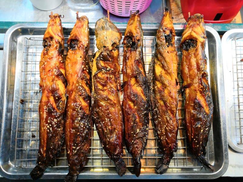 Ψημένο στη σχάρα γατόψαρο, ταϊλανδικά τρόφιμα στοκ φωτογραφία με δικαίωμα ελεύθερης χρήσης