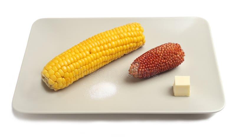 Ψημένο στη σχάρα καλαμπόκι που εξυπηρετείται με το βούτυρο και το άλας στο γκρίζο πιάτο στοκ φωτογραφία
