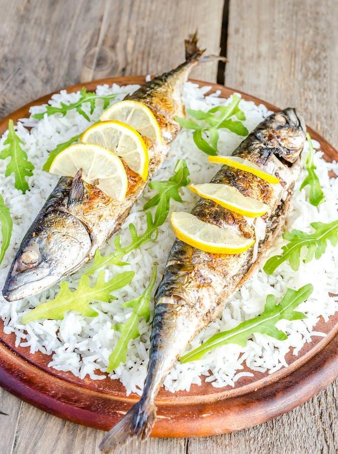 Ψημένο στη σχάρα σκουμπρί με basmati το ρύζι και το φρέσκο arugula στοκ φωτογραφία