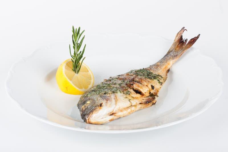 Ψημένο στη σχάρα tilapia στο άσπρο πιάτο στοκ φωτογραφίες