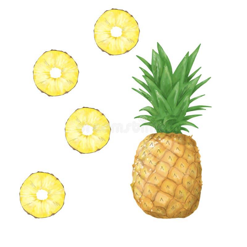 Ψηφιακά tripical φρούτα τέχνης συνδετήρων ανανά διανυσματική απεικόνιση