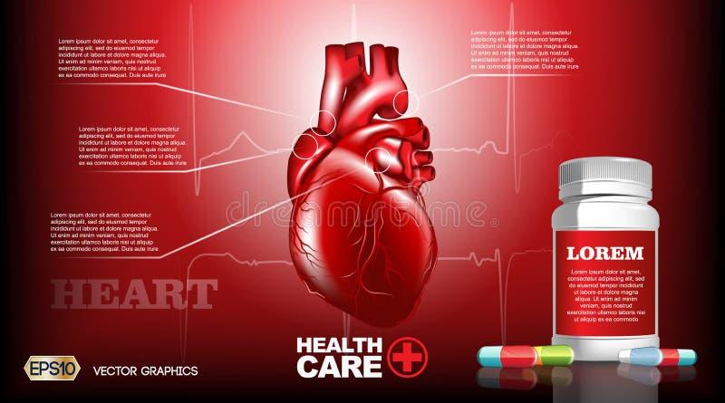 Ψηφιακή διανυσματική ρεαλιστική ανθρώπινη καρδιά Infografic Λεπτομερή απεικόνιση όργανα εξαιρετικής ποιότητας Χάπια φαρμάκων υγει απεικόνιση αποθεμάτων