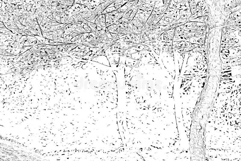 Ψηφιακή σχεδίαση δέντρων σε ασπρόμαυρο χρώμα σε λευκό φόντο διανυσματική απεικόνιση