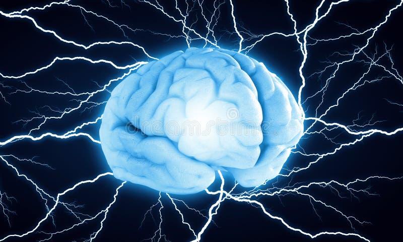 Ψηφιακός ανθρώπινος εγκέφαλος στοκ εικόνες
