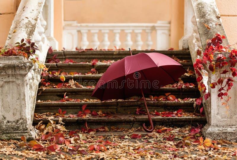 ψηφιακό φύλλο πτώσης ανασκόπησης φθινοπώρου τέχνης Κόκκινα και κίτρινα φύλλα στο παλαιό sto στοκ εικόνα