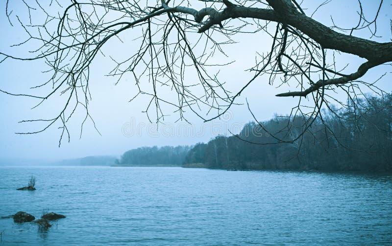 Ψυχρό κρύο τοπίο χειμερινών λιμνών στοκ εικόνα με δικαίωμα ελεύθερης χρήσης