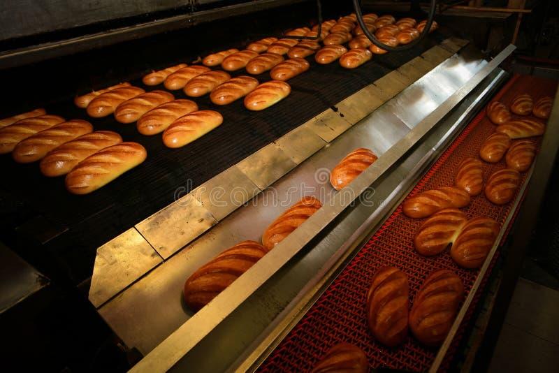 ψωμί στο αρτοποιείο στοκ φωτογραφία με δικαίωμα ελεύθερης χρήσης