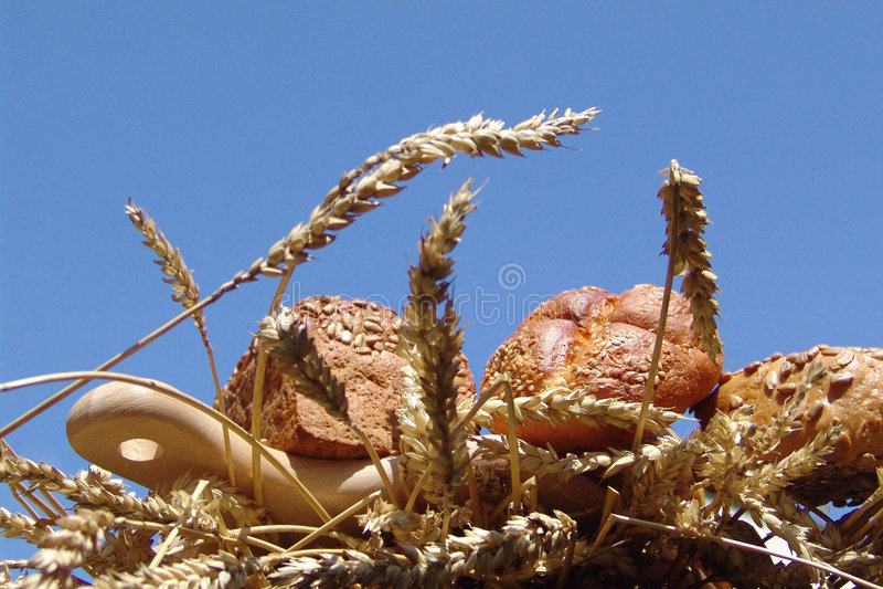 Download ψωμί στοκ εικόνες. εικόνα από ομάδα, αυτί, αδελφών, είδος - 390242