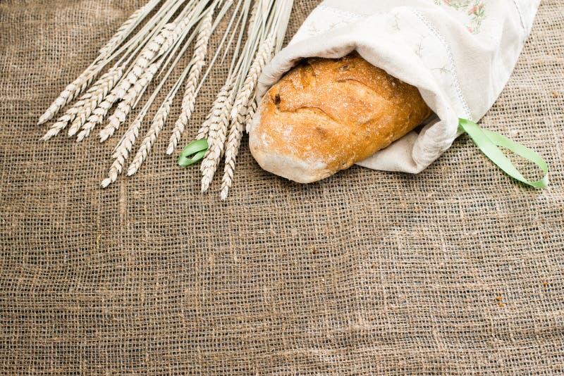Ψωμί Apulian Pugliese με το biga που καλύπτεται με το άσπρο ύφασμα, κοντά στοκ φωτογραφία με δικαίωμα ελεύθερης χρήσης