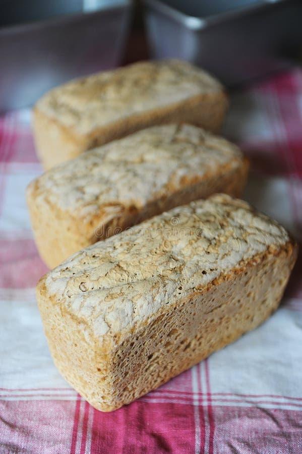Ψωμί leaven σίκαλης χωρίς ζύμη τρία φρέσκες φραντζόλες σε ένα ελεγμένο τραπεζομάντιλο στοκ φωτογραφία