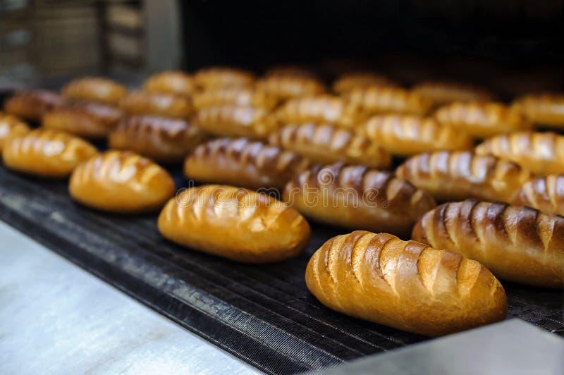 Ψωμιά στη γραμμή παραγωγής στο αρτοποιείο στοκ εικόνα
