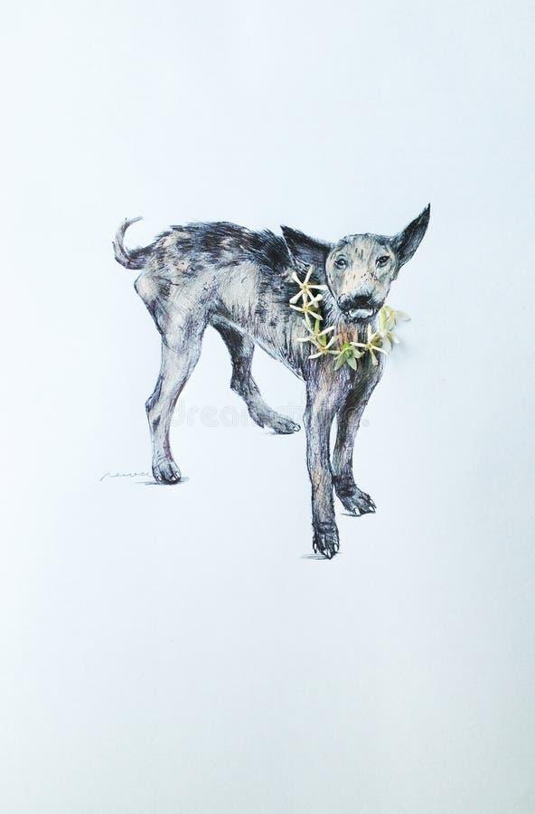 Ψωραλαίο σκυλί στοκ εικόνες