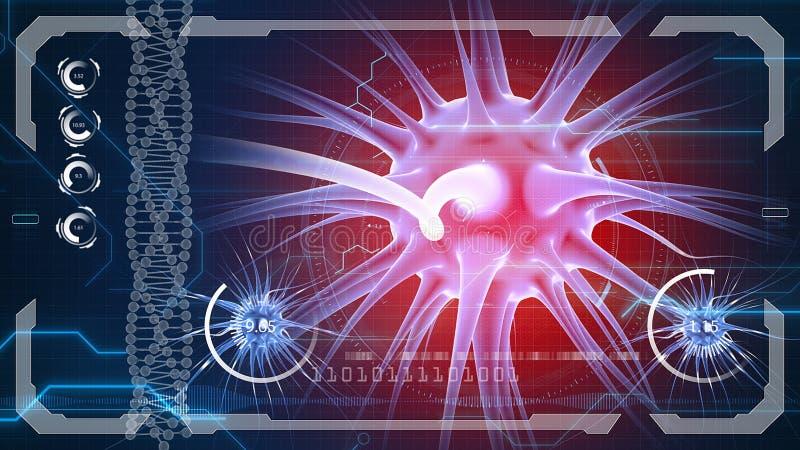 Ωθήσεις εγκεφάλου Σύστημα νευρώνων Ανθρώπινη ανατομία μεταφορά των σφυγμών και παραγωγή των πληροφοριών απεικόνιση αποθεμάτων