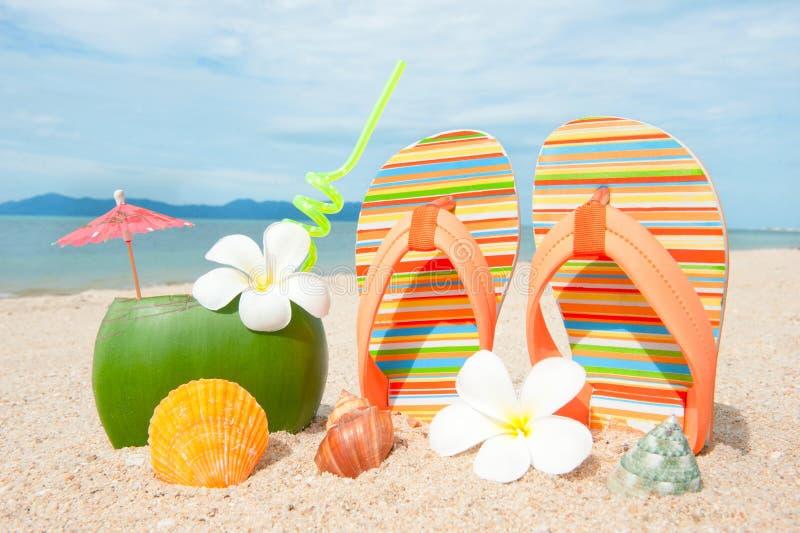 Ωκεάνια παραλία με το εξωτικό coctail στοκ φωτογραφία με δικαίωμα ελεύθερης χρήσης