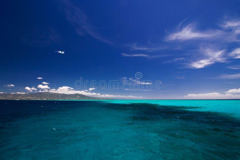 Download ωκεάνια όψη στοκ εικόνα. εικόνα από ριψοκινδυνεμμένο, πρωί - 2227601