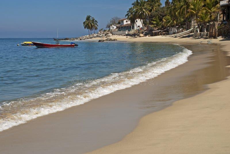 ωκεάνιος ειρηνικός παρα&la στοκ φωτογραφία με δικαίωμα ελεύθερης χρήσης