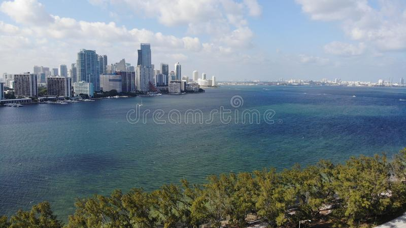 Ωκεάνιο δάσος του Μαϊάμι Φλώριδα θάλασσας στοκ φωτογραφία με δικαίωμα ελεύθερης χρήσης