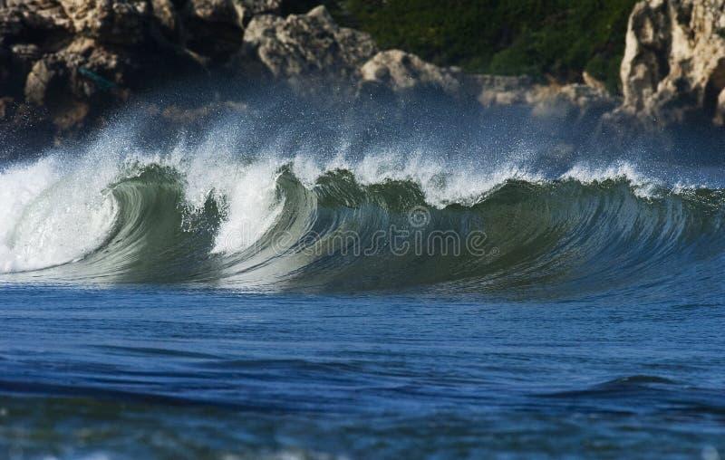 ωκεάνιο κύμα στοκ εικόνα με δικαίωμα ελεύθερης χρήσης