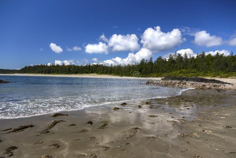 Ωκεάνιο Νησί Βανκούβερ χωρών του δακτυλίου του Ειρηνικού Λονγκ Μπιτς ακρών νερού ` s στοκ φωτογραφίες