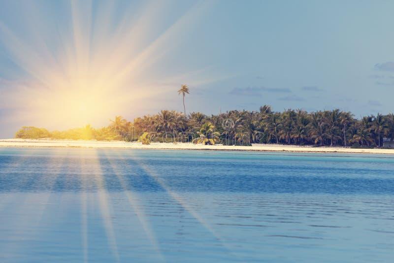 Ωκεανός στο ηλιοβασίλεμα Πολυνησία Ταϊτή στοκ εικόνα