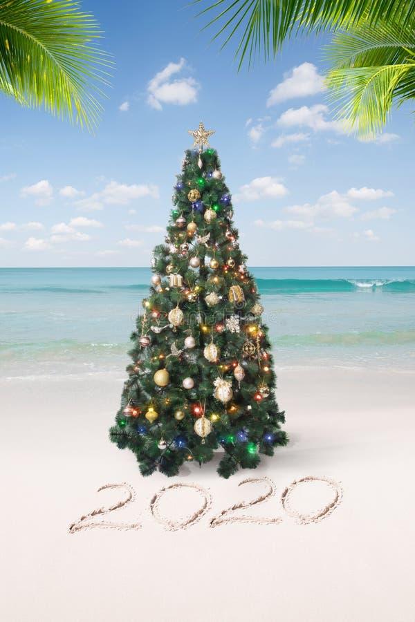 ωραία Χριστούγεννα και πρωτοχρονιάτικη θέα τροπική παραλία στοκ εικόνα