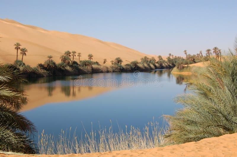 όαση Σαχάρα ερήμων στοκ εικόνες με δικαίωμα ελεύθερης χρήσης