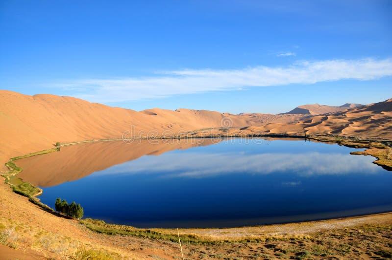 Όαση στην έρημο στοκ φωτογραφία