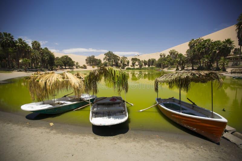 Όαση στους αμμόλοφους Περού στοκ φωτογραφία