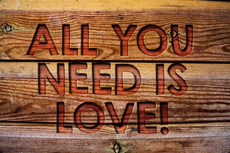 Όλο κειμένων γραφής που χρειάζεστε είναι αγάπη κινητήρια Έννοια που σημαίνει το βαθύ ρωμανικό ξύλινο υπόβαθρο VI εκτίμησης αναγκώ στοκ φωτογραφία με δικαίωμα ελεύθερης χρήσης