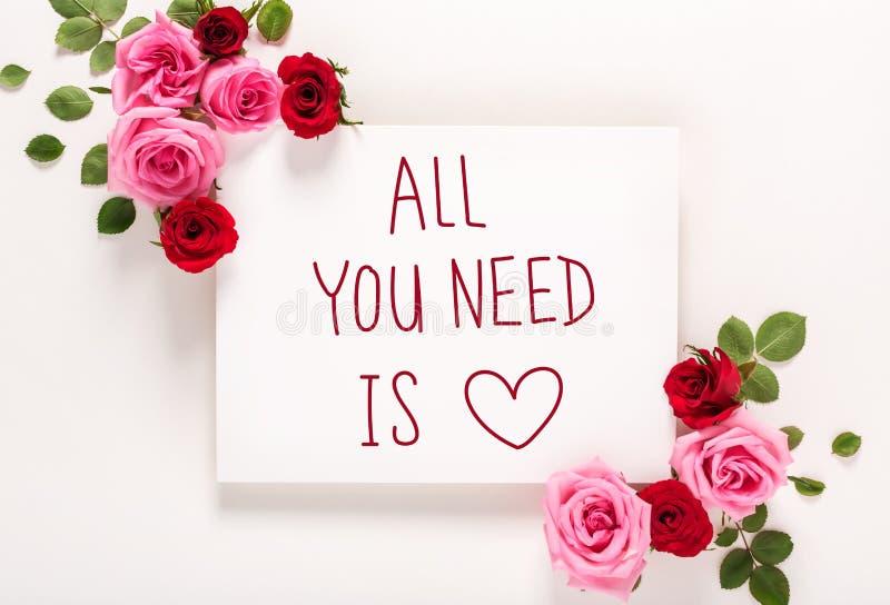 Όλο που χρειάζεστε είναι μήνυμα αγάπης με τα τριαντάφυλλα και τα φύλλα στοκ εικόνες