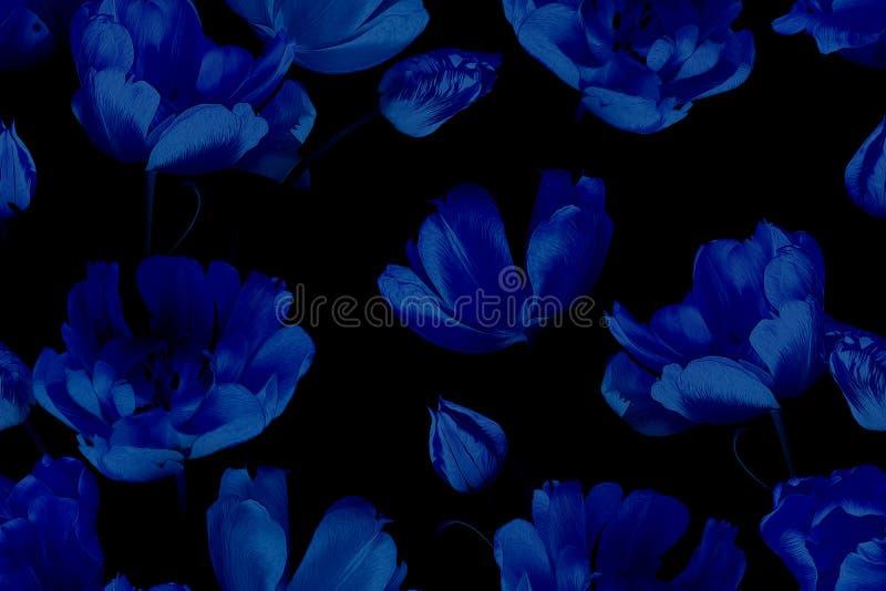 Όμορφα ανοιξιάτικα λουλούδια τουλίπες Μοτίβο χωρίς ραφή από ίνες Μπλε σε μαύρο στοκ εικόνες με δικαίωμα ελεύθερης χρήσης