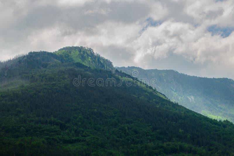 Όμορφα βουνά του φαραγγιού της Tara ποταμών Εθνικό πάρκο Durmitor στο Μαυροβούνιο, Βαλκάνια, Ευρώπη στοκ φωτογραφίες