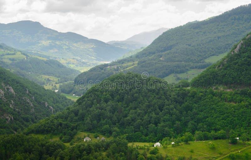 Όμορφα βουνά του φαραγγιού της Tara ποταμών Εθνικό πάρκο Durmitor στο Μαυροβούνιο, Βαλκάνια, Ευρώπη στοκ εικόνες με δικαίωμα ελεύθερης χρήσης