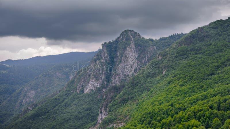 Όμορφα βουνά του φαραγγιού της Tara ποταμών Εθνικό πάρκο Durmitor στο Μαυροβούνιο, Βαλκάνια, Ευρώπη στοκ φωτογραφία