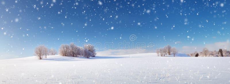 Όμορφα δέντρα στο χειμερινό τοπίο στα ξημερώματα στοκ εικόνα με δικαίωμα ελεύθερης χρήσης