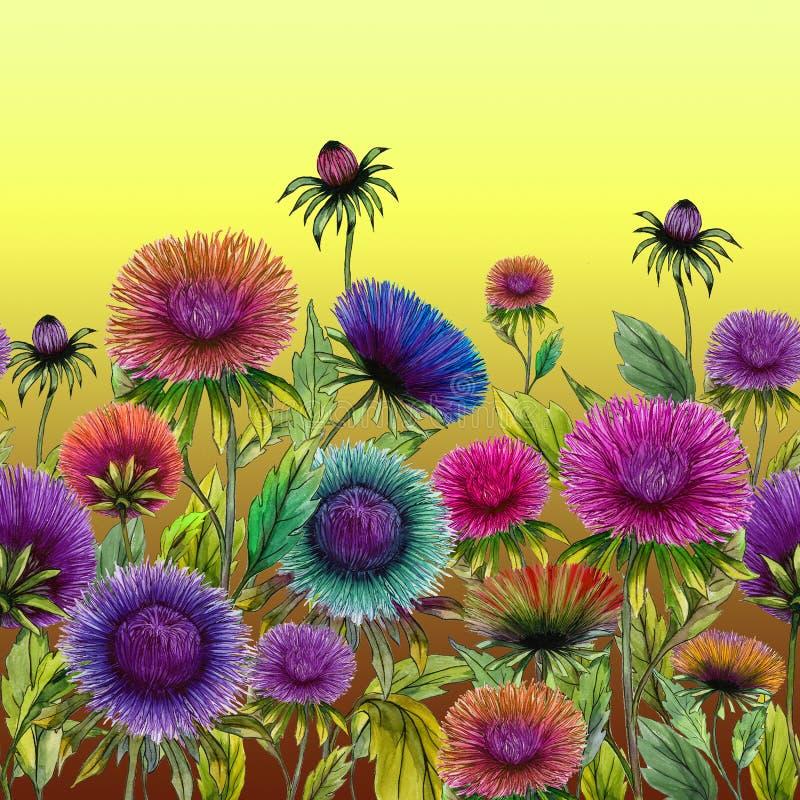 Όμορφα ζωηρόχρωμα λουλούδια αστέρων με τα πράσινα φύλλα στο κίτρινο υπόβαθρο floral πρότυπο άνευ ραφής υψηλό watercolor ποιοτικής ελεύθερη απεικόνιση δικαιώματος