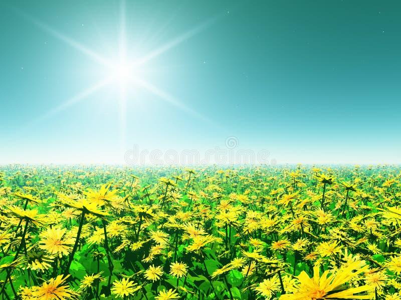 όμορφα ζωηρόχρωμα λουλού& στοκ εικόνες