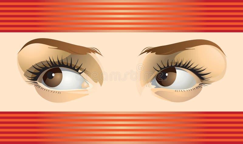 Όμορφα θηλυκά καφετιά μάτια ελεύθερη απεικόνιση δικαιώματος