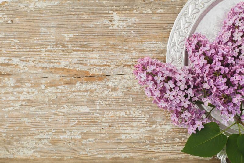 Όμορφα ιώδη λουλούδια που βρίσκονται σε ένα ασημένιο πιατάκι ενάντια στην ΤΣΕ στοκ εικόνα με δικαίωμα ελεύθερης χρήσης