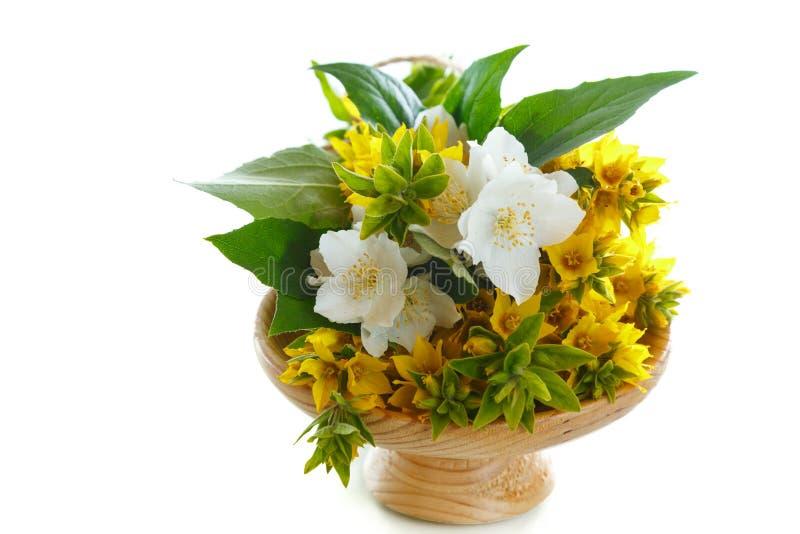 Όμορφα κίτρινα θερινά λουλούδια στοκ φωτογραφία με δικαίωμα ελεύθερης χρήσης