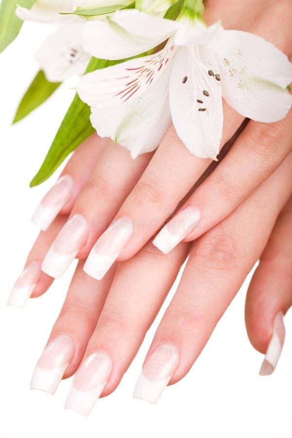 όμορφα καρφιά δάχτυλων στοκ εικόνα