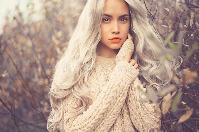Όμορφα κυρία φύλλα φθινοπώρου στοκ φωτογραφίες με δικαίωμα ελεύθερης χρήσης