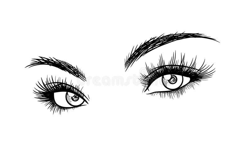 Όμορφα μάτια γυναικών με το σκίτσο επεκτάσεων Eyelash απεικόνιση αποθεμάτων