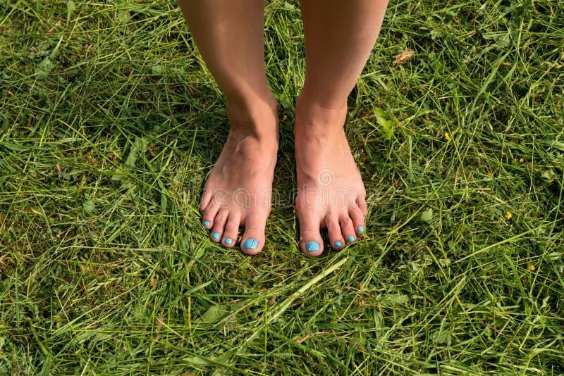 Όμορφα νέα θηλυκά πόδια που περπατούν στη χλόη το καλοκαίρι στοκ εικόνα με δικαίωμα ελεύθερης χρήσης