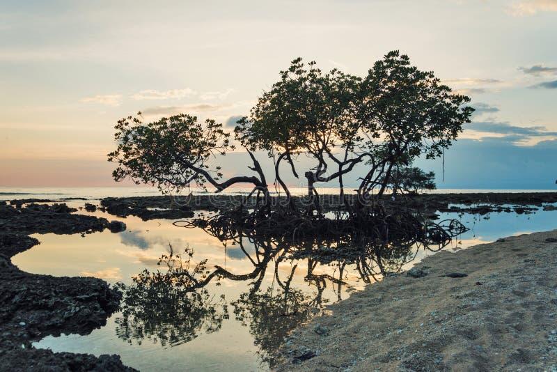 Όμορφα νησί ηλιοβασιλέματος, Andaman και Nicobar, Ινδία στοκ φωτογραφία